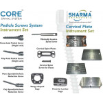 Pedicle Screws System